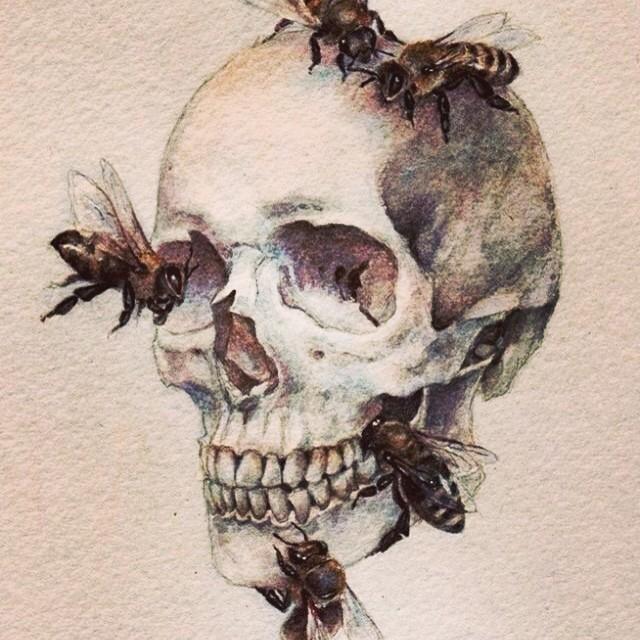 Arsonist Lullaby Madison Joy Stuart Madisonjoyystuart Instagram