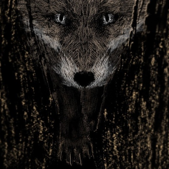 """""""After the foxes have known our taste I'll be home with you, I'll be home with you"""" #wip #warehouselive #warehousecreative #inaweek #creative #brushstroke #fox #gigposter #progress #paintstroke #sepia Read more at http://websta.me/p/926537943833577499_6941985#ZBaSYHrIk7IGQ8xS.99"""